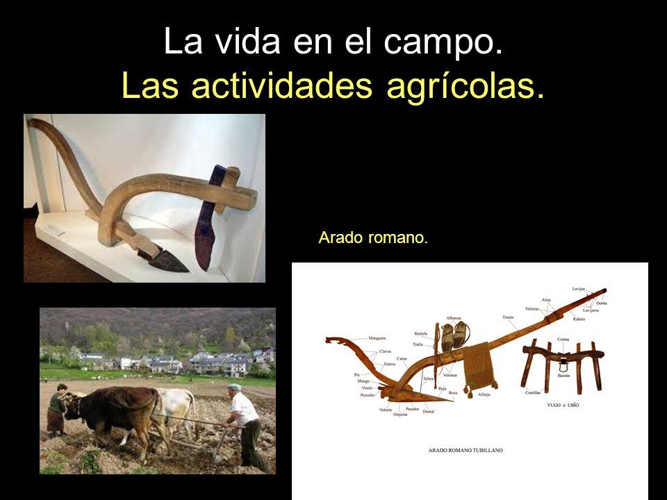 La vida en el campo. Las actividades agrícolas. Arado romano.