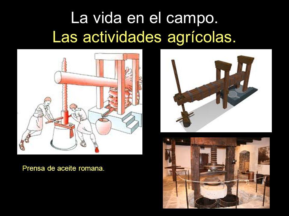 La vida en el campo. Las actividades agrícolas. Prensa de aceite romana.