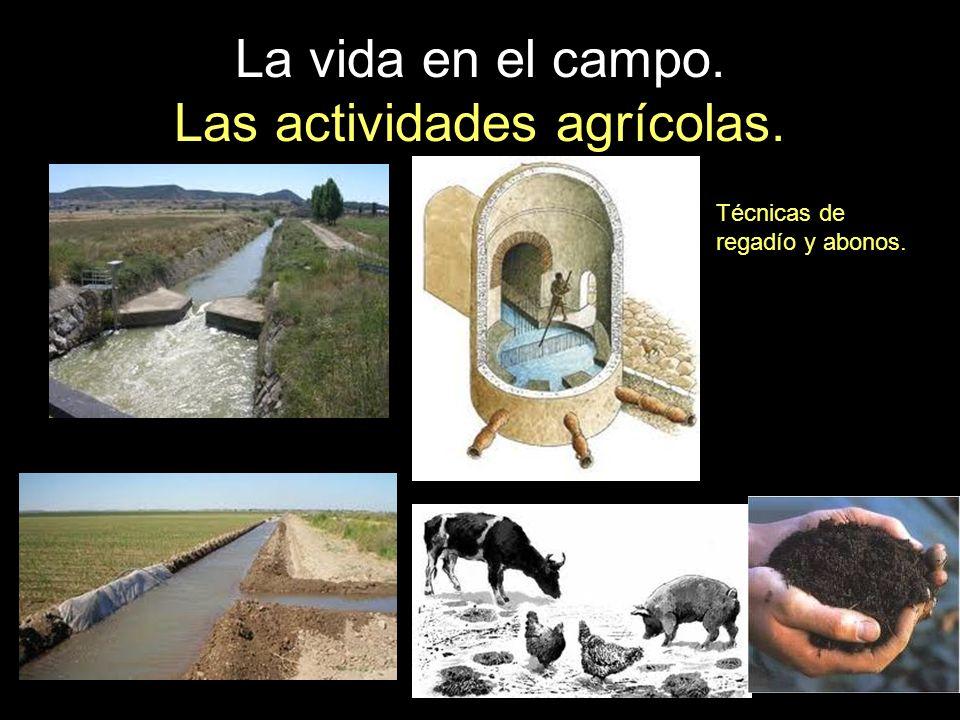 La vida en el campo. Las actividades agrícolas. Técnicas de regadío y abonos.