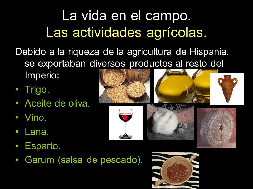 La vida en el campo. Las actividades agrícolas. Debido a la riqueza de la agricultura de Hispania, se exportaban diversos productos al resto del Imper