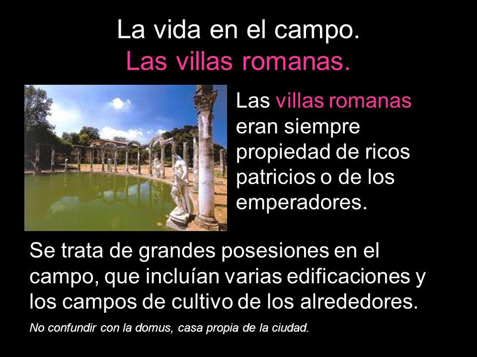La vida en el campo. Las villas romanas. Las villas romanas eran siempre propiedad de ricos patricios o de los emperadores. Se trata de grandes posesi