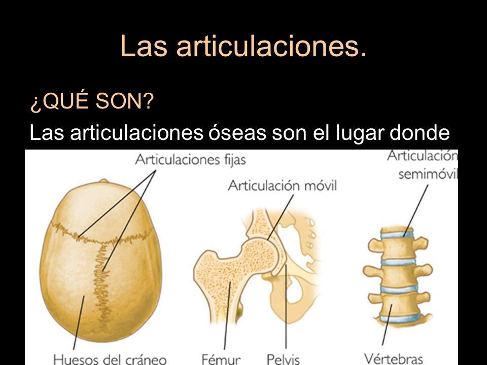 Las articulaciones. ¿QUÉ SON? Las articulaciones óseas son el lugar donde se juntan dos huesos.