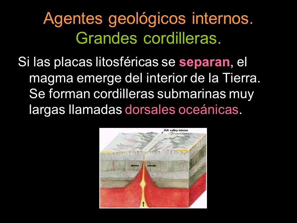 Si las placas litosféricas se separan, el magma emerge del interior de la Tierra. Se forman cordilleras submarinas muy largas llamadas dorsales oceáni