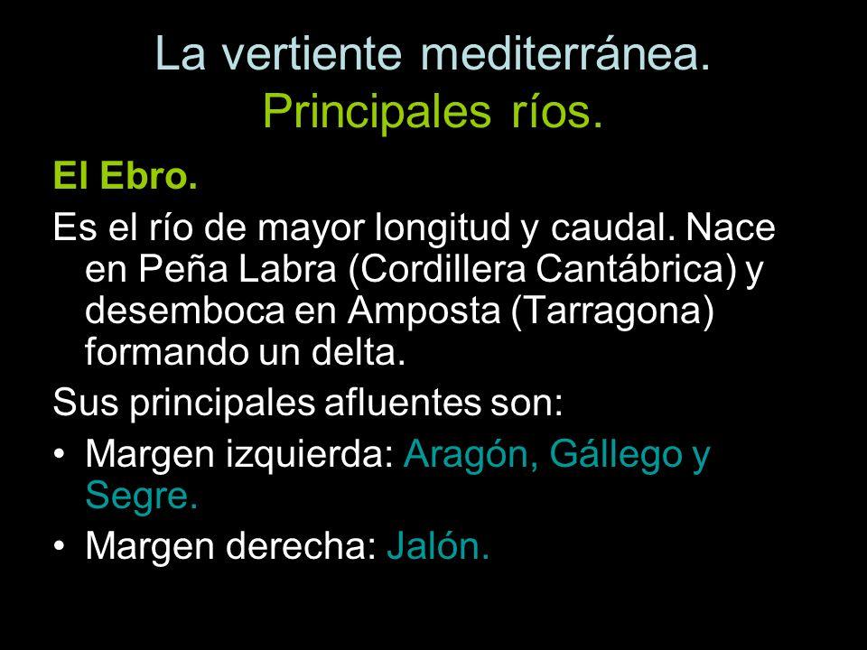 El Ebro. Es el río de mayor longitud y caudal. Nace en Peña Labra (Cordillera Cantábrica) y desemboca en Amposta (Tarragona) formando un delta. Sus pr