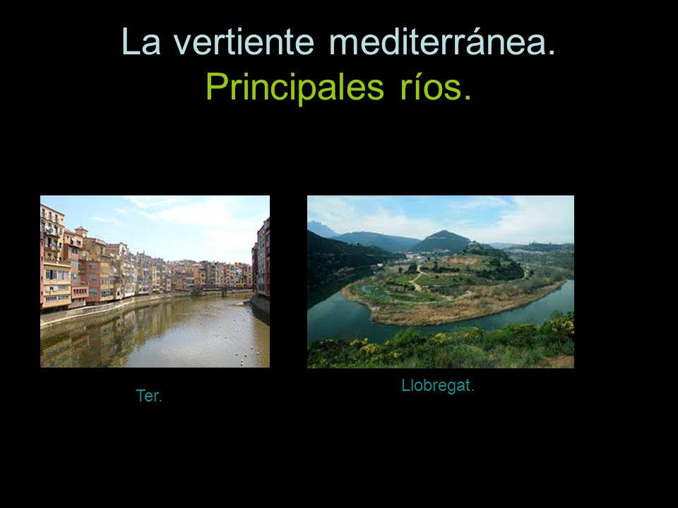 La vertiente mediterránea. Principales ríos. Ter. Llobregat.