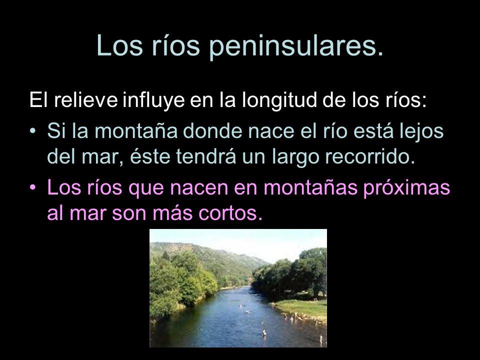 El relieve influye en la longitud de los ríos: Si la montaña donde nace el río está lejos del mar, éste tendrá un largo recorrido. Los ríos que nacen