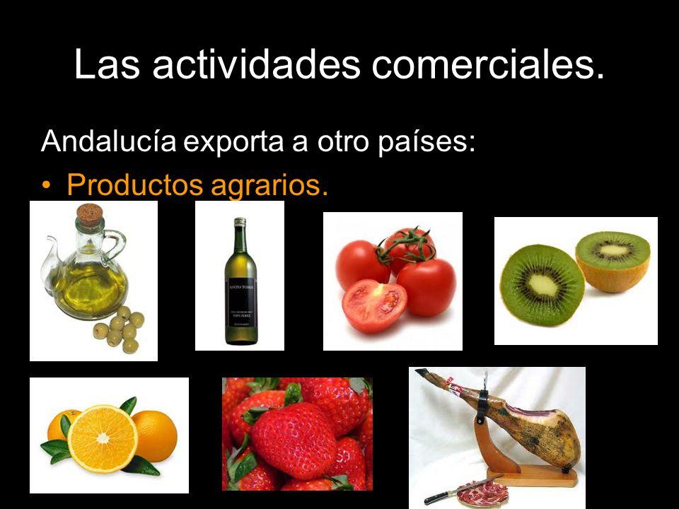 Andalucía exporta a otro países: Productos agrarios.
