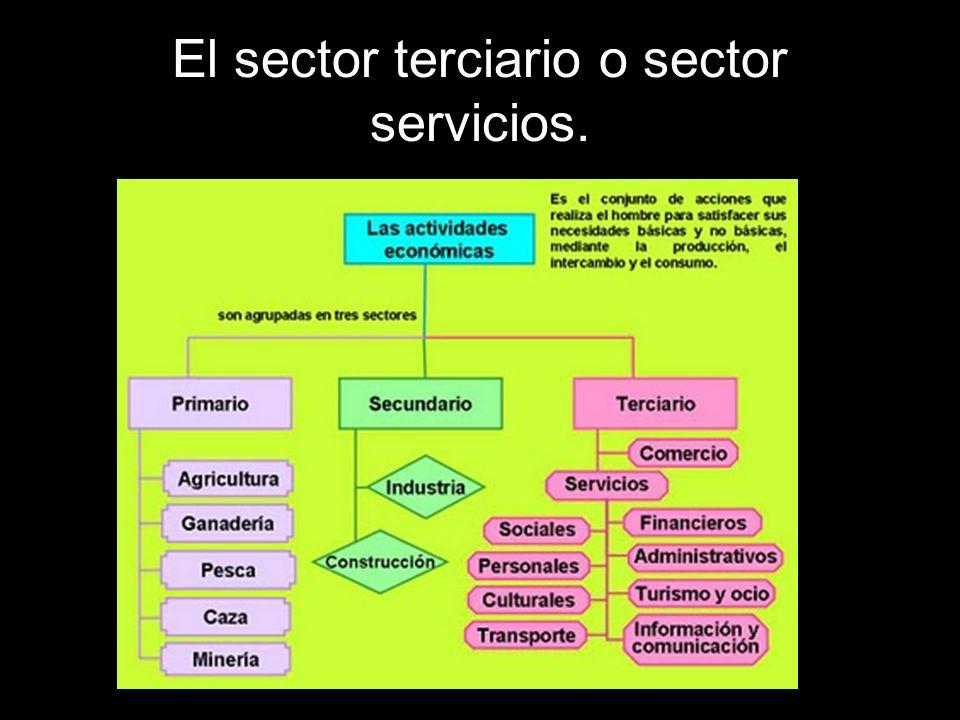 El sector terciario también es llamado sector servicios.