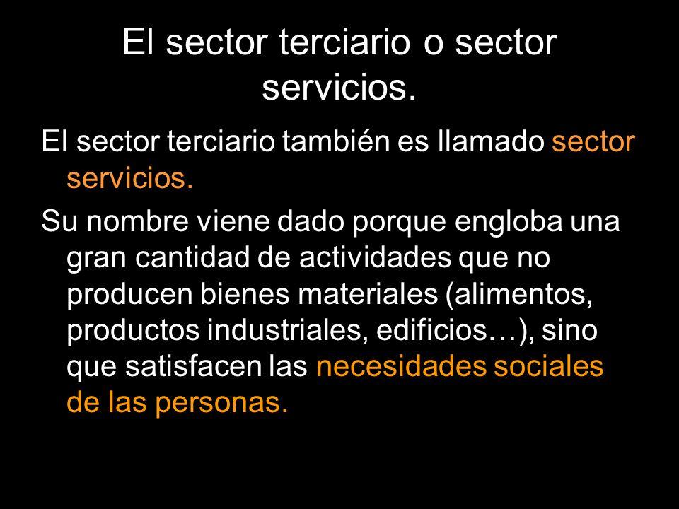 El sector terciario también es llamado sector servicios. Su nombre viene dado porque engloba una gran cantidad de actividades que no producen bienes m