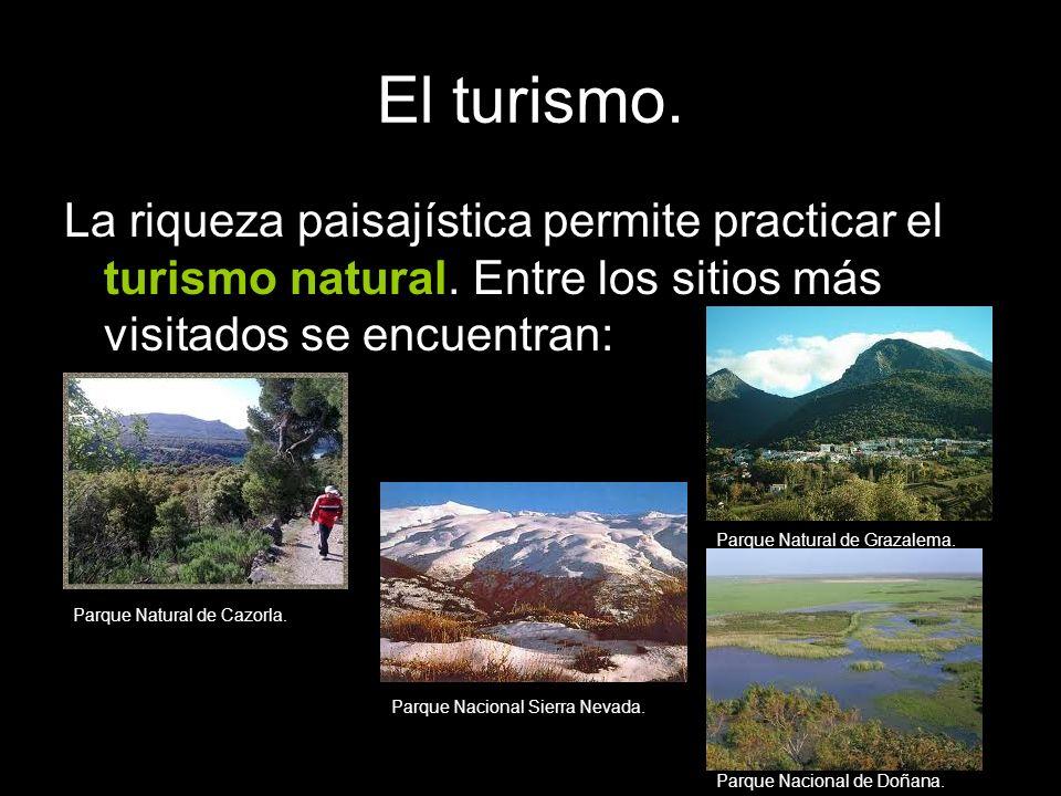 El turismo. La riqueza paisajística permite practicar el turismo natural. Entre los sitios más visitados se encuentran: Parque Natural de Cazorla. Par