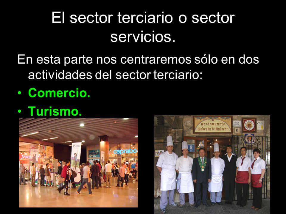 El sector terciario o sector servicios. En esta parte nos centraremos sólo en dos actividades del sector terciario: Comercio. Turismo.