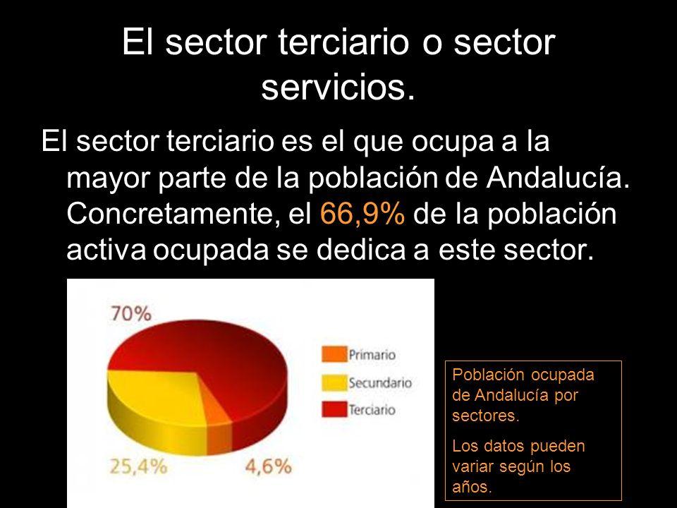 El sector terciario o sector servicios. El sector terciario es el que ocupa a la mayor parte de la población de Andalucía. Concretamente, el 66,9% de