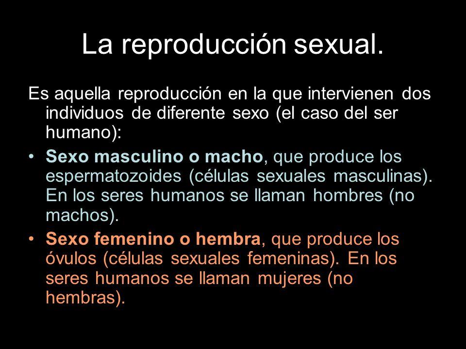 La reproducción sexual. Es aquella reproducción en la que intervienen dos individuos de diferente sexo (el caso del ser humano): Sexo masculino o mach