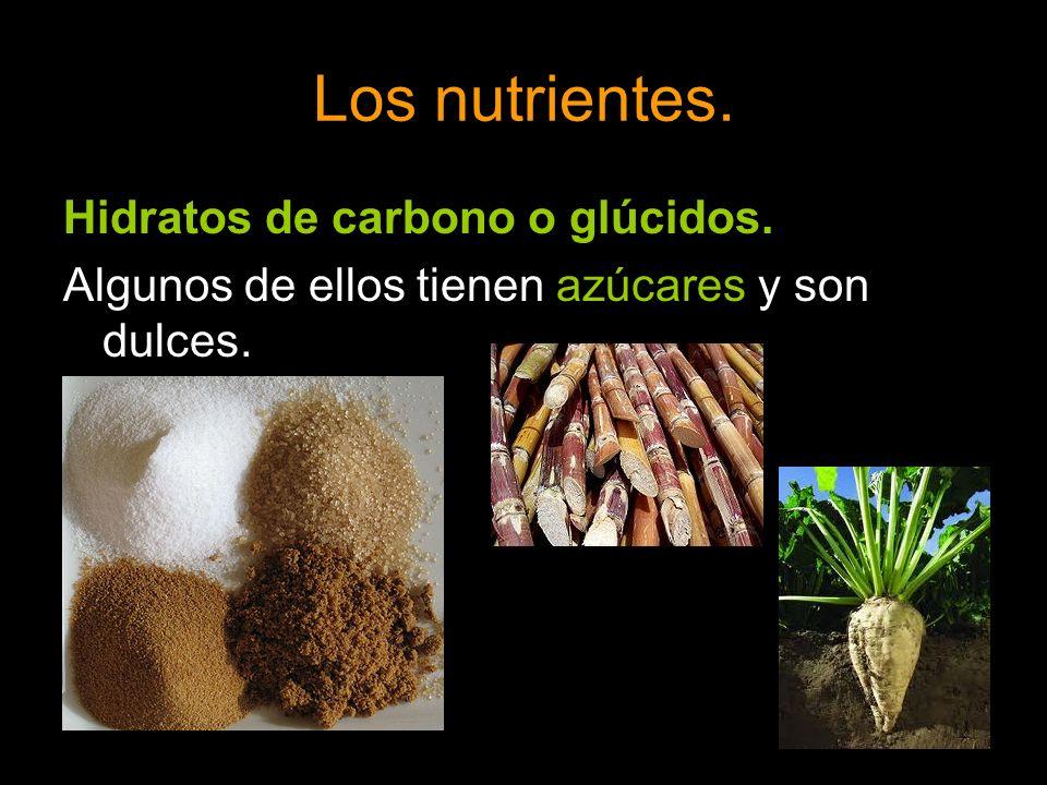 Los nutrientes. Hidratos de carbono o glúcidos. Algunos de ellos tienen azúcares y son dulces.