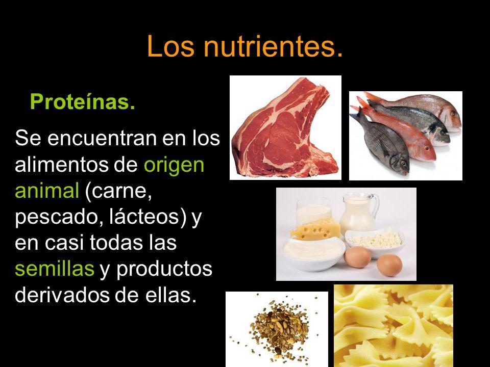 Los nutrientes. Proteínas. Se encuentran en los alimentos de origen animal (carne, pescado, lácteos) y en casi todas las semillas y productos derivado