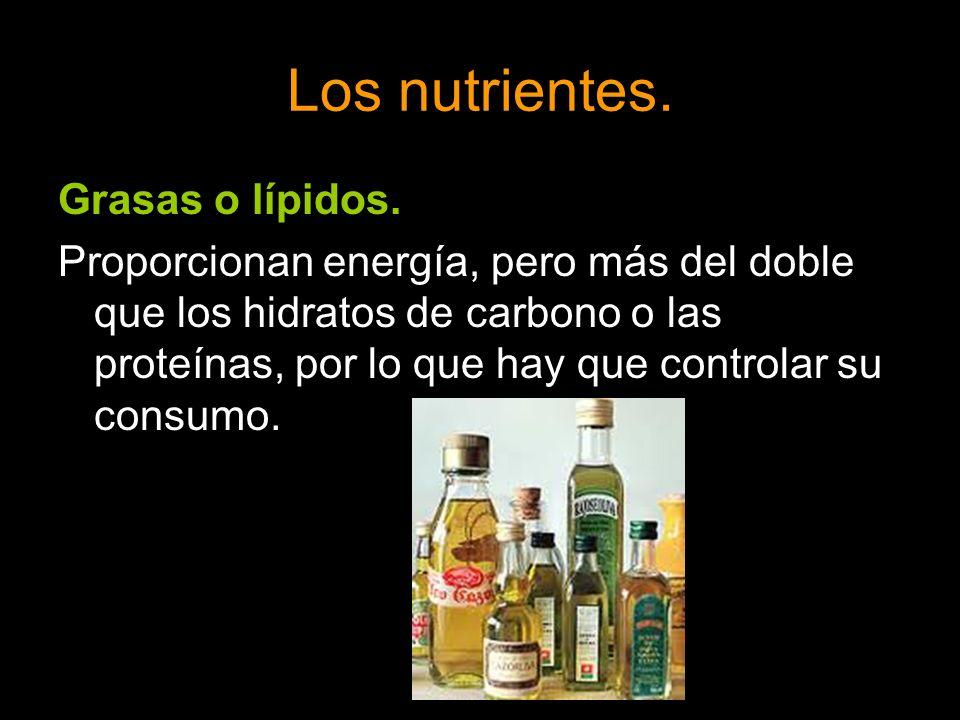 Grasas o lípidos. Proporcionan energía, pero más del doble que los hidratos de carbono o las proteínas, por lo que hay que controlar su consumo.
