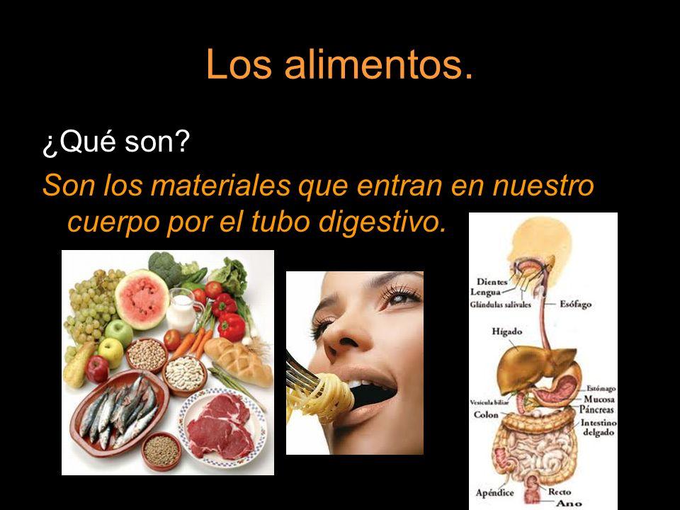 Los alimentos. ¿Qué son? Son los materiales que entran en nuestro cuerpo por el tubo digestivo.