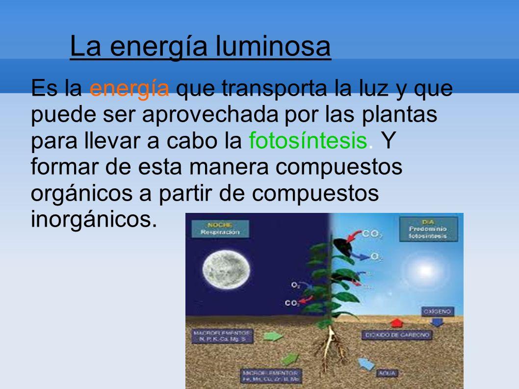 La energía luminosa Es la energía que transporta la luz y que puede ser aprovechada por las plantas para llevar a cabo la fotosíntesis. Y formar de es