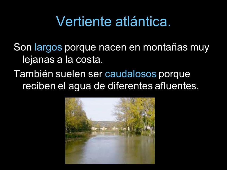 Vertiente atlántica. Son largos porque nacen en montañas muy lejanas a la costa. También suelen ser caudalosos porque reciben el agua de diferentes af