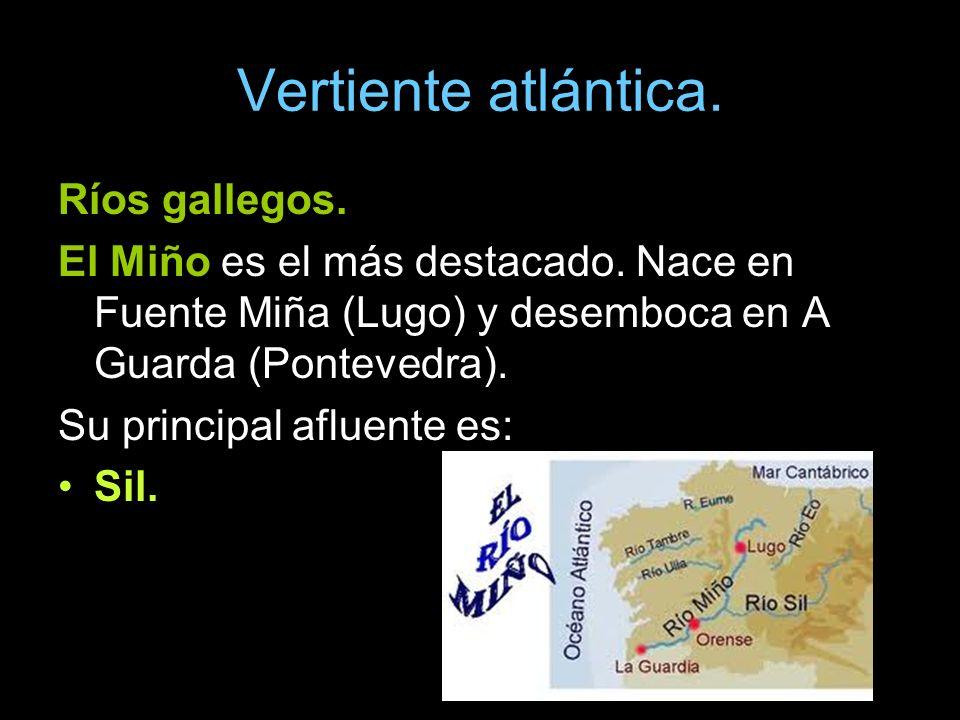 Ríos gallegos. El Miño es el más destacado. Nace en Fuente Miña (Lugo) y desemboca en A Guarda (Pontevedra). Su principal afluente es: Sil.