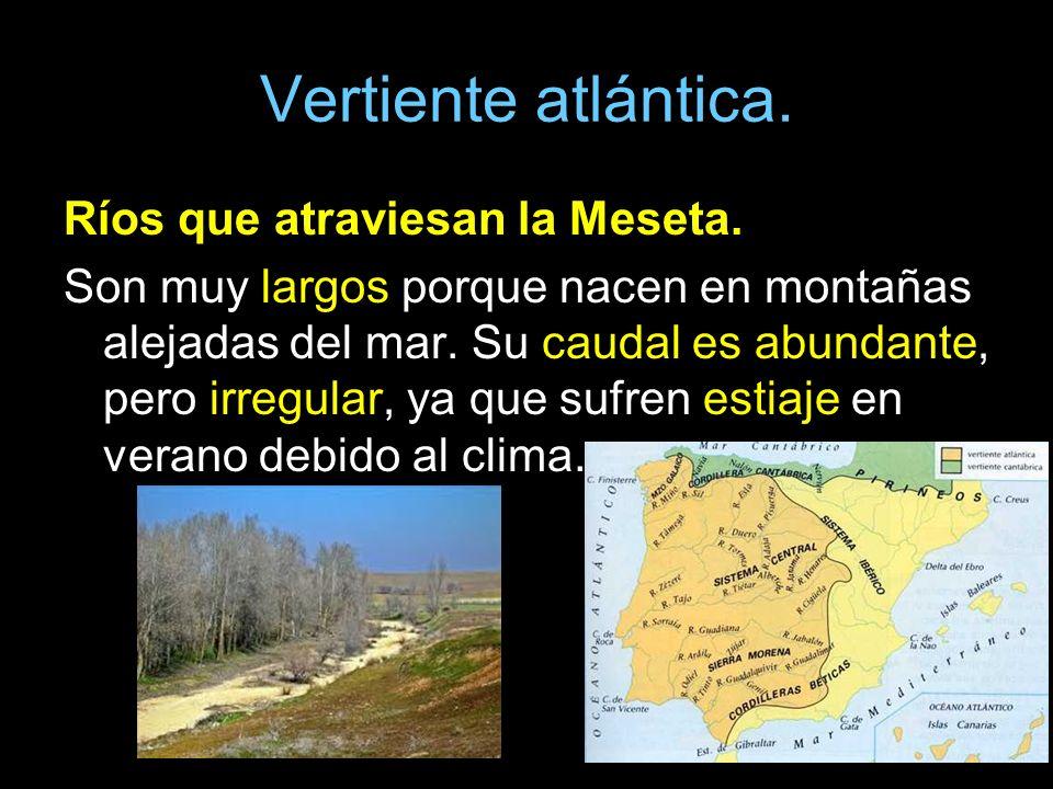 Vertiente atlántica. Ríos que atraviesan la Meseta. Son muy largos porque nacen en montañas alejadas del mar. Su caudal es abundante, pero irregular,
