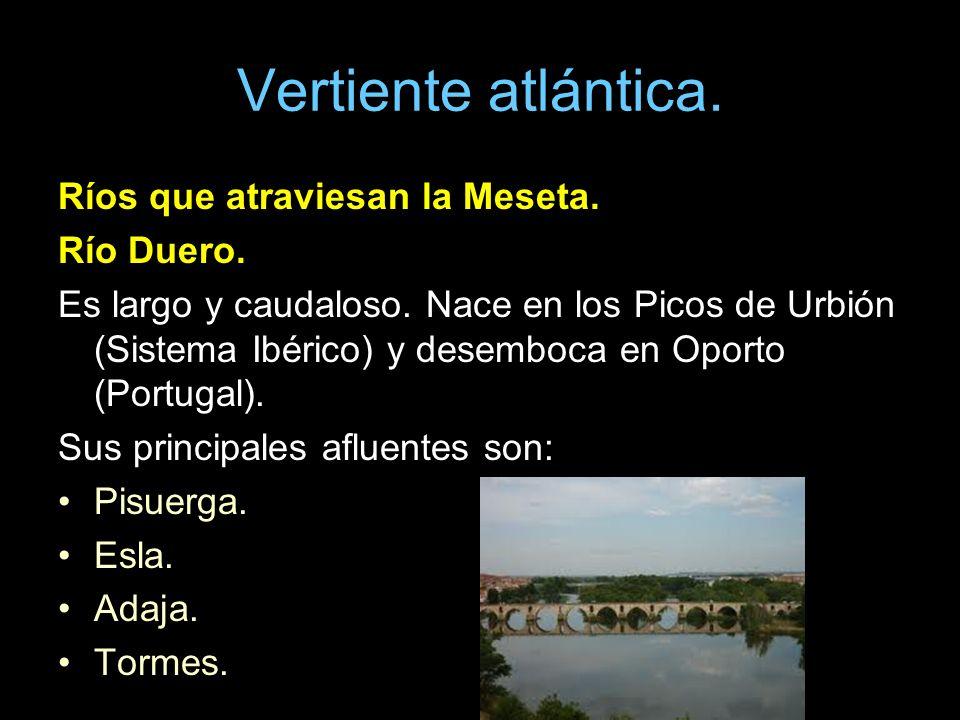 Vertiente atlántica. Ríos que atraviesan la Meseta. Río Duero. Es largo y caudaloso. Nace en los Picos de Urbión (Sistema Ibérico) y desemboca en Opor