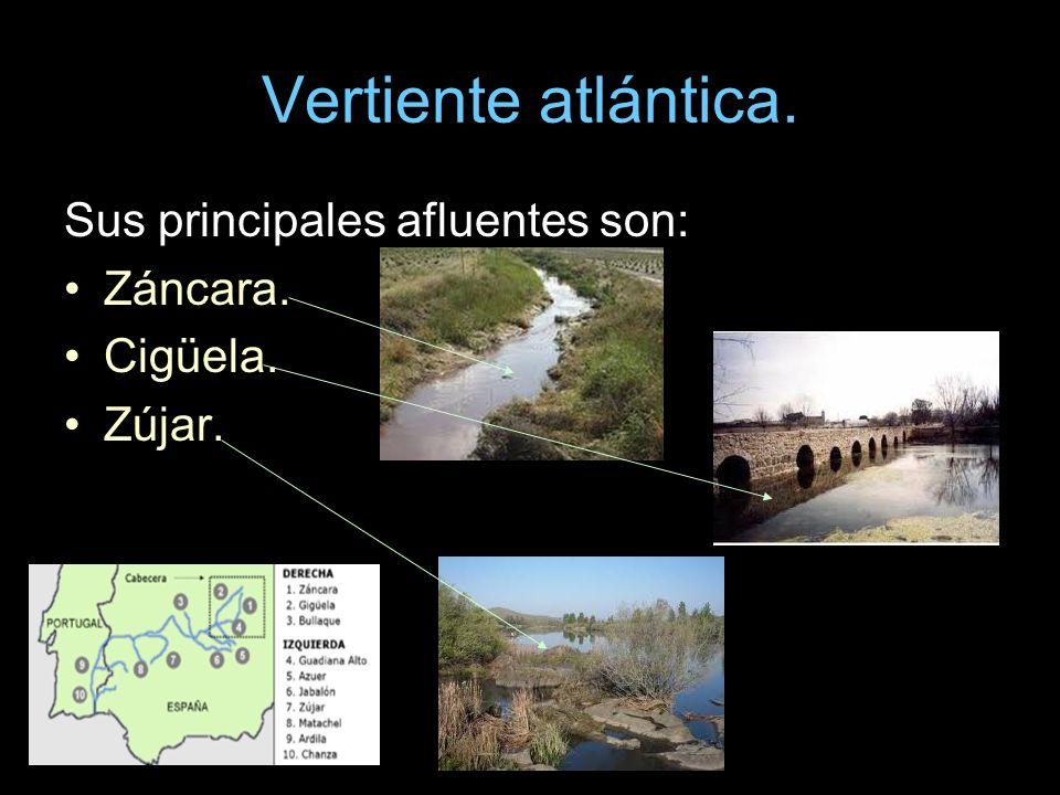 Sus principales afluentes son: Záncara. Cigüela. Zújar.