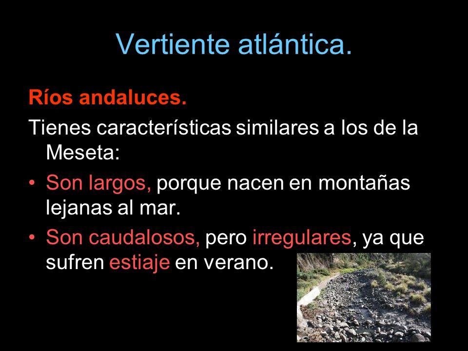 Vertiente atlántica. Ríos andaluces. Tienes características similares a los de la Meseta: Son largos, porque nacen en montañas lejanas al mar. Son cau
