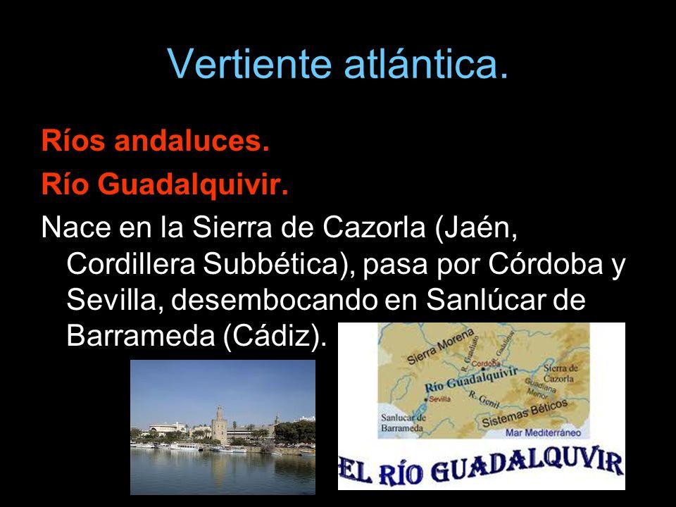 Ríos andaluces. Río Guadalquivir. Nace en la Sierra de Cazorla (Jaén, Cordillera Subbética), pasa por Córdoba y Sevilla, desembocando en Sanlúcar de B