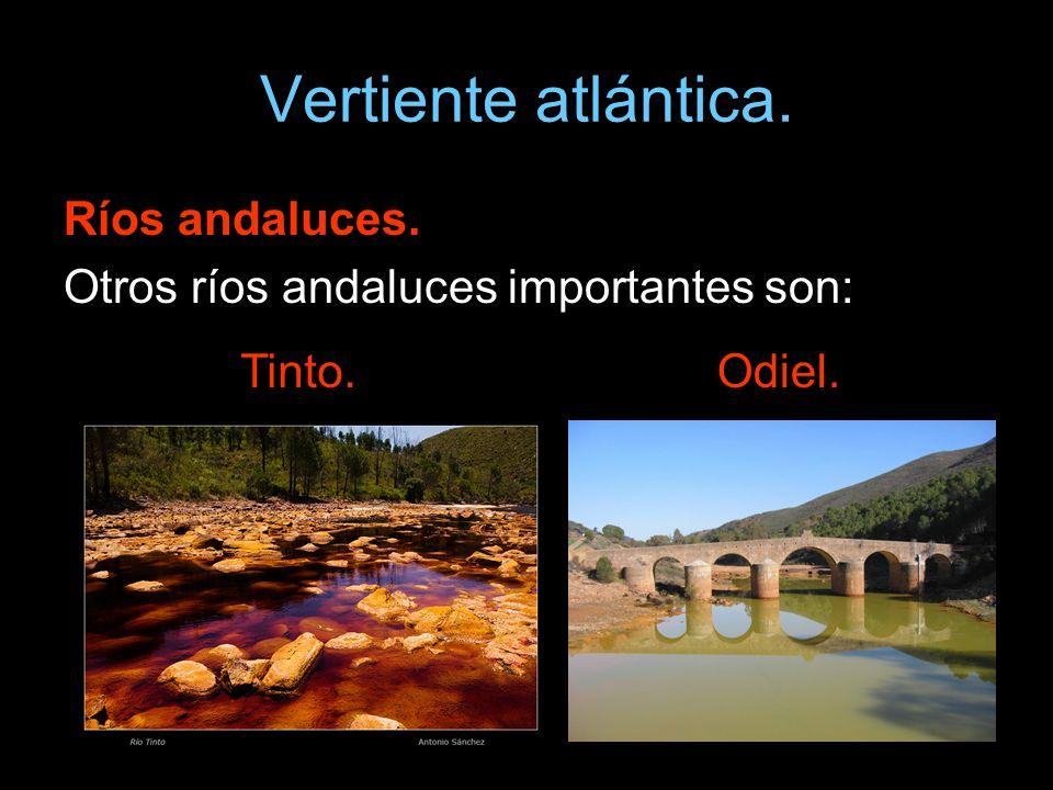 Vertiente atlántica. Ríos andaluces. Otros ríos andaluces importantes son: Tinto.Odiel.