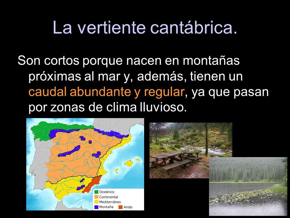 Son cortos porque nacen en montañas próximas al mar y, además, tienen un caudal abundante y regular, ya que pasan por zonas de clima lluvioso.