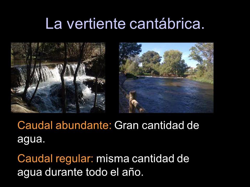 La vertiente cantábrica. Caudal abundante: Gran cantidad de agua. Caudal regular: misma cantidad de agua durante todo el año.