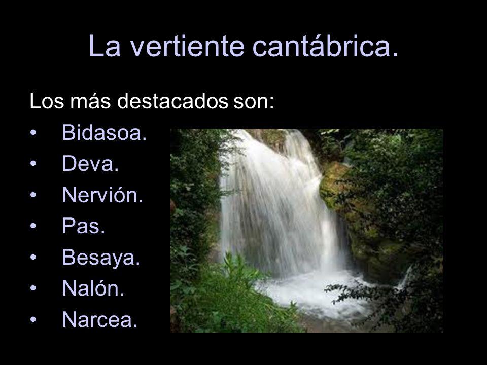 La vertiente cantábrica. Los más destacados son: Bidasoa. Deva. Nervión. Pas. Besaya. Nalón. Narcea.