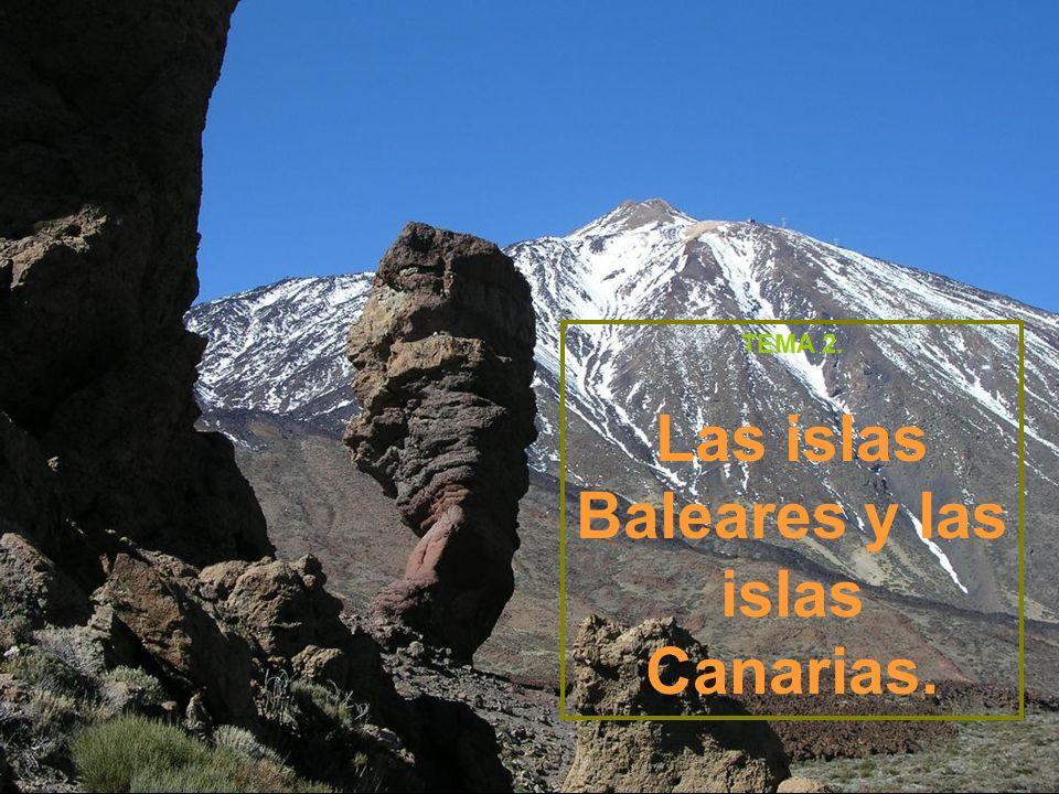 RELIEVE: Islas orientales: Lanzarote y Fuerteventura tienen un relieve poco accidentado y de poca altitud.