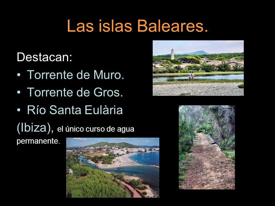 Las islas Baleares. Destacan: Torrente de Muro. Torrente de Gros. Río Santa Eulària (Ibiza), el único curso de agua permanente.