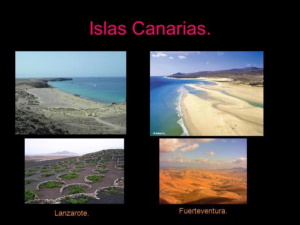 Lanzarote. Fuerteventura.