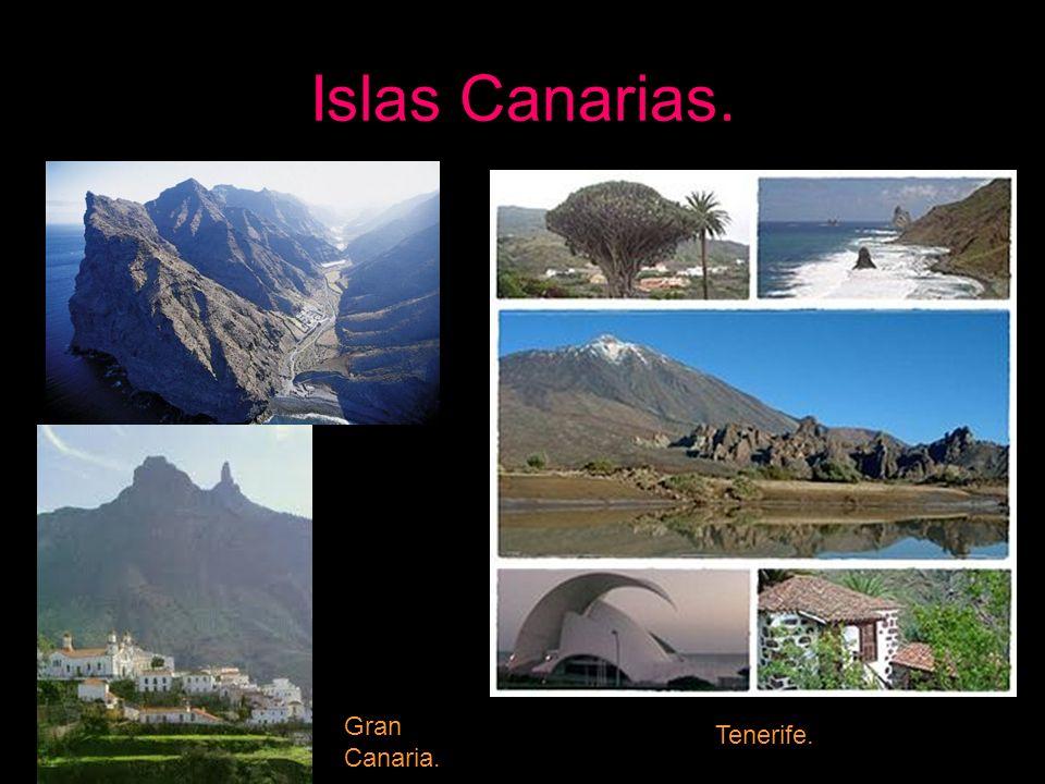 Islas Canarias. Gran Canaria. Tenerife.