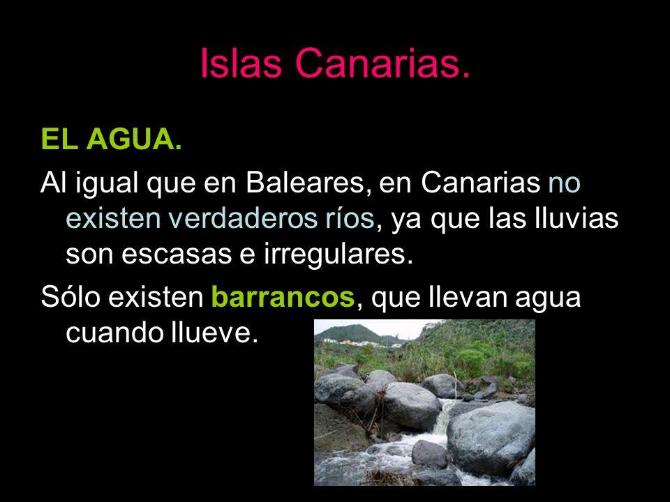 Islas Canarias. EL AGUA. Al igual que en Baleares, en Canarias no existen verdaderos ríos, ya que las lluvias son escasas e irregulares. Sólo existen