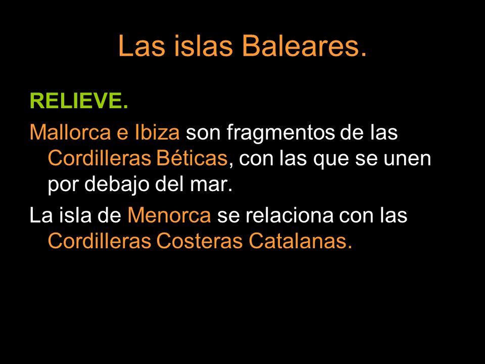 Las islas Baleares. RELIEVE. Mallorca e Ibiza son fragmentos de las Cordilleras Béticas, con las que se unen por debajo del mar. La isla de Menorca se
