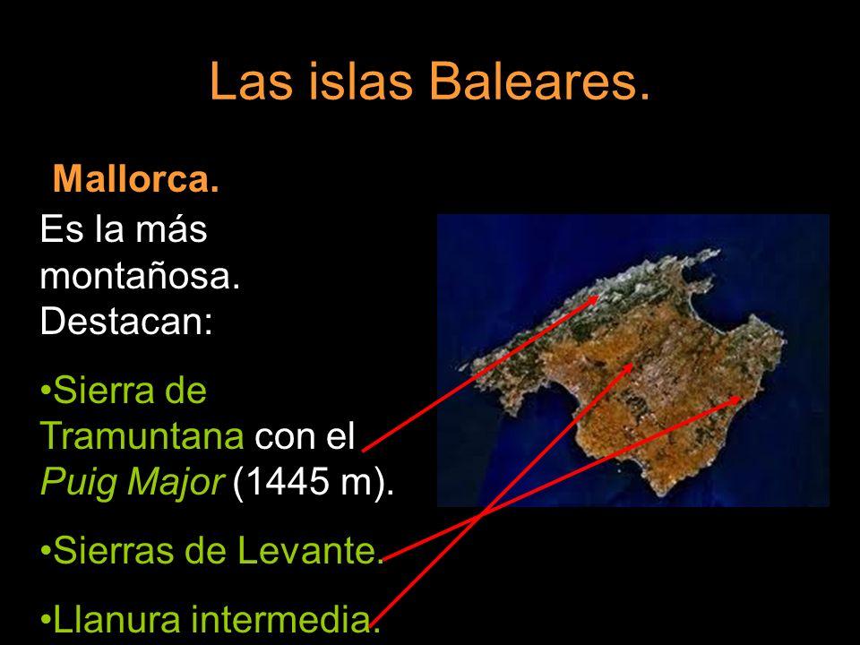 Mallorca. Es la más montañosa. Destacan: Sierra de Tramuntana con el Puig Major (1445 m). Sierras de Levante. Llanura intermedia.