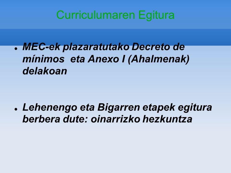 Curriculumaren Egitura MEC-ek plazaratutako Decreto de mínimos eta Anexo I (Ahalmenak) delakoan Lehenengo eta Bigarren etapek egitura berbera dute: oi