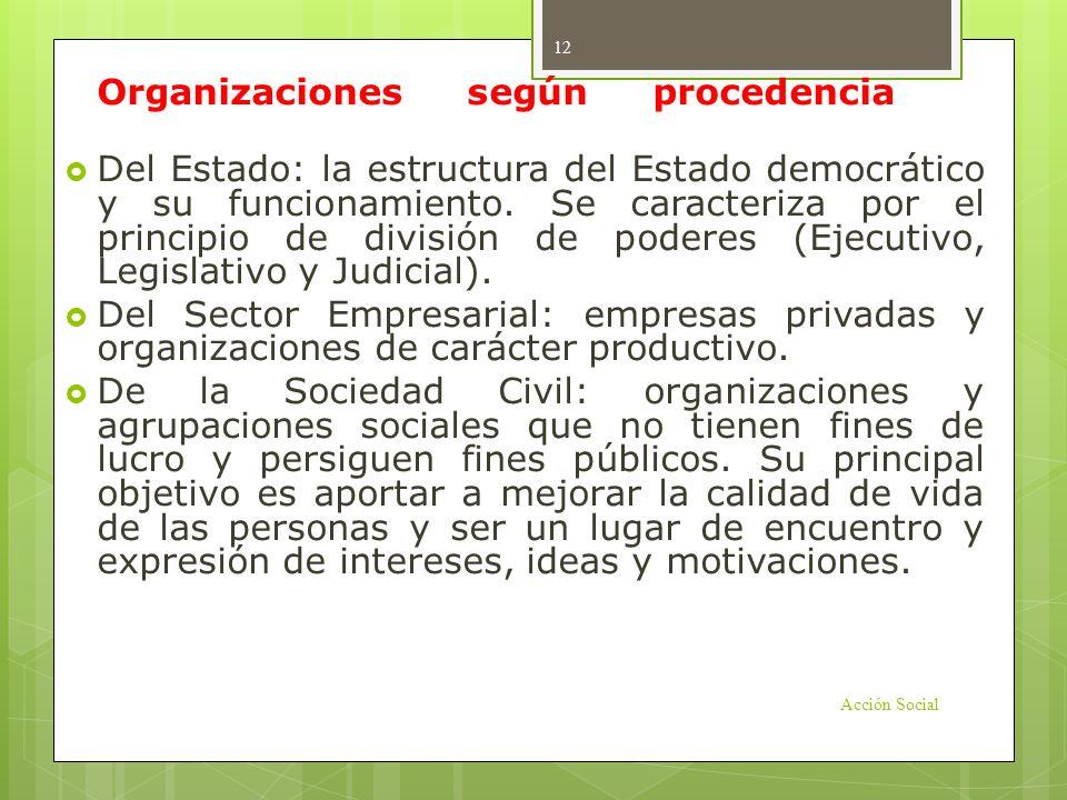 Organizaciones según procedencia o función: Del Estado: la estructura del Estado democrático y su funcionamiento. Se caracteriza por el principio de d