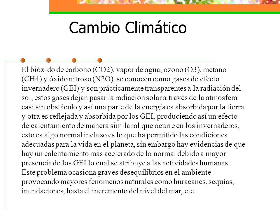 Pronostica el tiempo El daño a la atmósfera de la Tierra y al clima parece un problema tan masivo, que nuestra reacción inicial es preguntar: ¿Qué dif