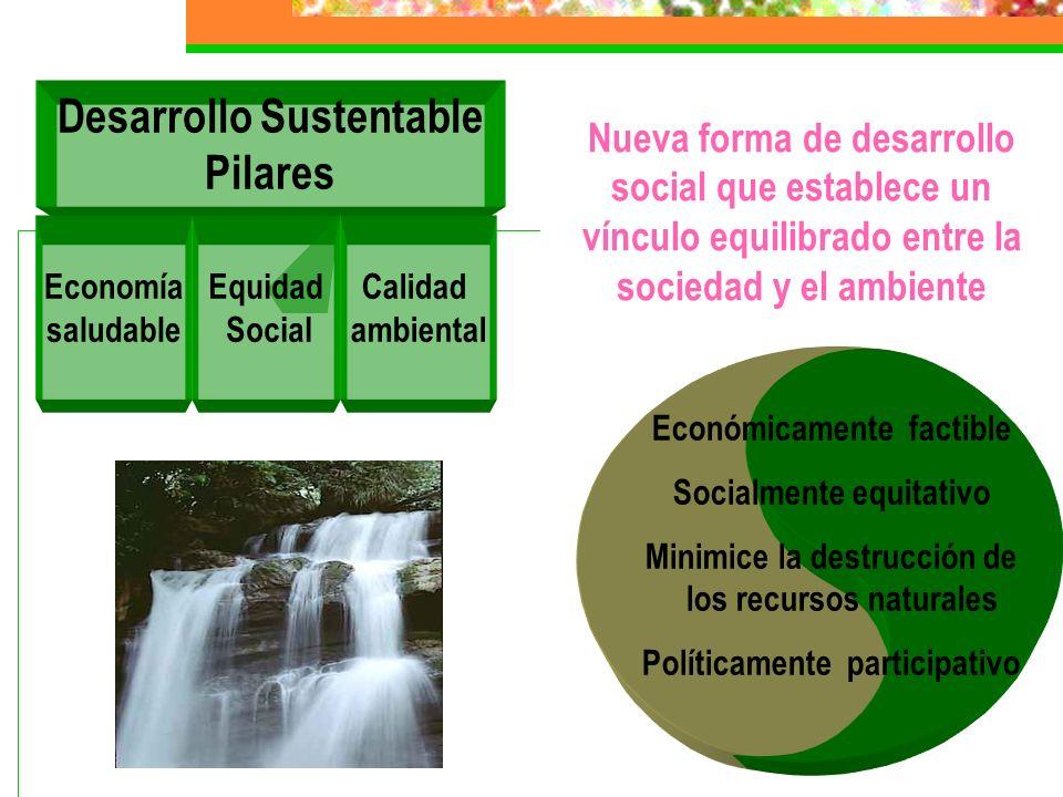 Concepto D. S. El desarrollo sustentable satisface las necesidades de las generaciones presentes sin comprometer las capacidades de las generaciones f