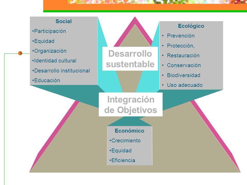 Nueva forma de desarrollo social que establece un vínculo equilibrado entre la sociedad y el ambiente Desarrollo Sustentable Pilares Economía saludabl