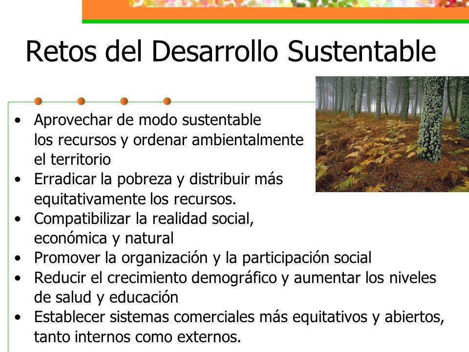 Social Participación Equidad Organización Identidad cultural Desarrollo institucional Educación Ecológico Prevención Protección, Restauración Conserva