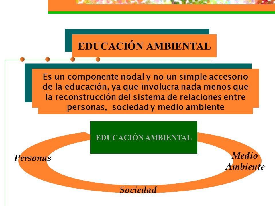 Educación Ambiental La educación ambiental se define como el proceso que forma al individuo para desempeñar un papel crítico dentro de la sociedad, pa