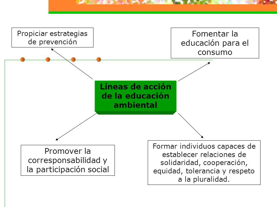 EDUCACIÓN AMBIENTAL Es un componente nodal y no un simple accesorio de la educación, ya que involucra nada menos que la reconstrucción del sistema de