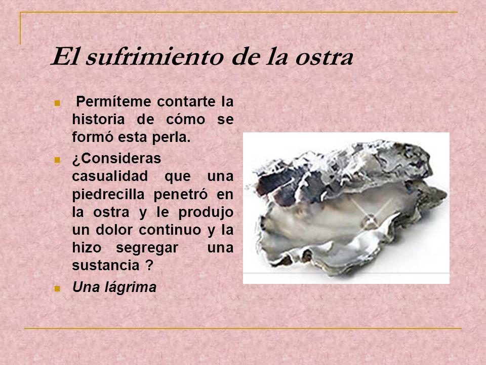 El sufrimiento de la ostra Permíteme contarte la historia de cómo se formó esta perla. ¿Consideras casualidad que una piedrecilla penetró en la ostra
