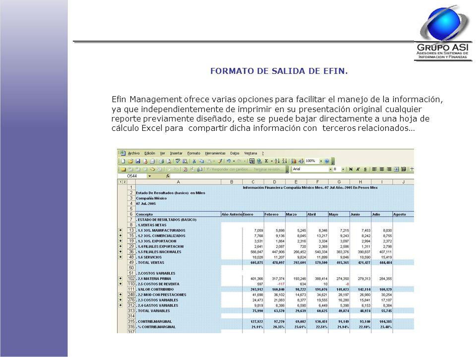 FORMATO DE SALIDA DE EFIN.